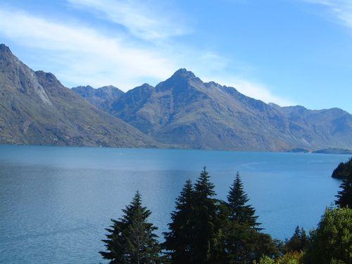 NZ04.jpg